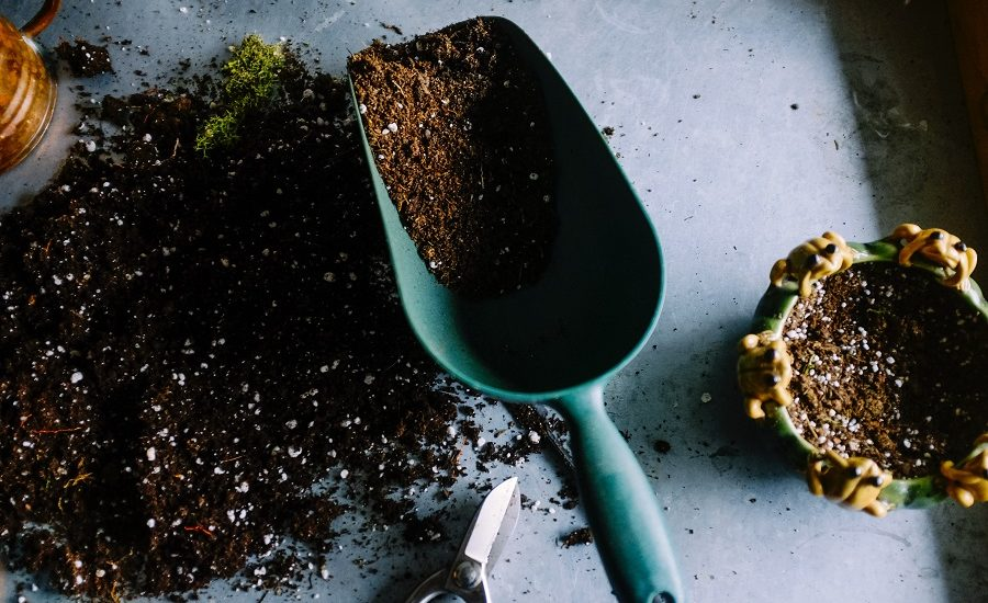 Potting mix in a small shovel