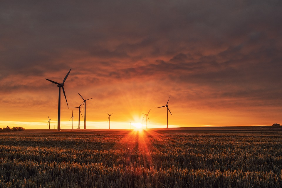 Windmills in a field at sunset